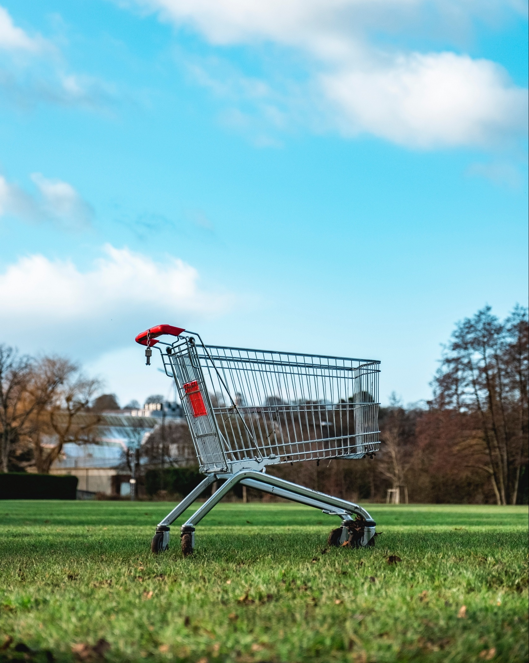 An empty shopping cart on a grassy lawn